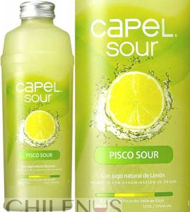 Capel Pisco Sour Premium 14% aus Chile